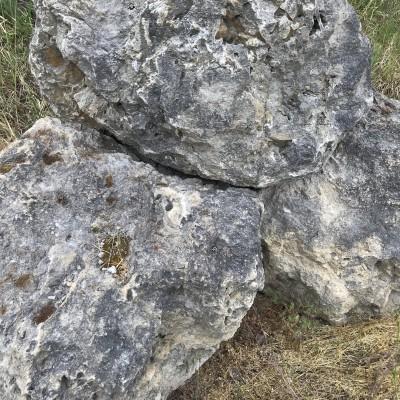 Kristályos-kvarcit ''kerti kő''